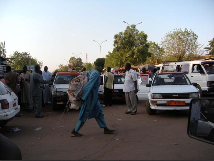 Niger Development Efforts