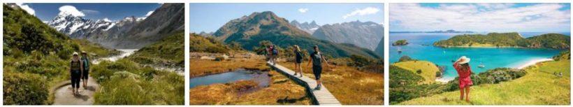 New Zealand Travel Advice