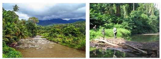 Tropical rainforests of Sumatra (World Heritage)